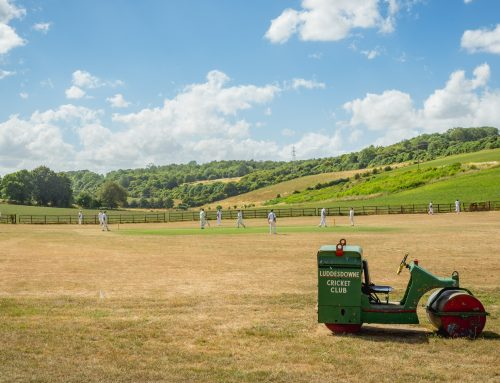 15 Beautiful Village Cricket Clubs