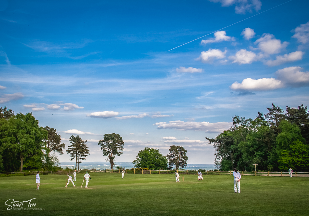 Coldharbour Cricket